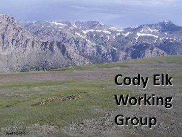 Cody Elk Working Group
