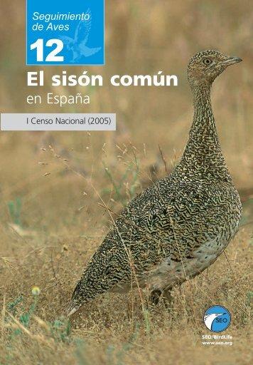 El sisón común - SEO/BirdLife