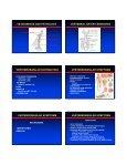 Vertebrobasilar Insufficiency - VascularWeb - Page 2