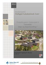 Sluttrapport delprosjekt 6 - Ål kommune