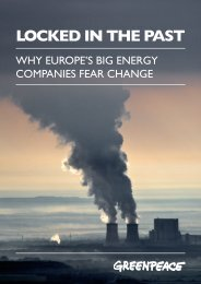 20140227-report-_locked_in_the_past_-_why_europes_big_energy_companies_fear_change_0