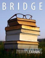 Fall 2013 Bridge - Pension Fund