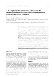 C:\Documents and Settings\Adolf - Grupo de Ecoloxía Evolutiva e da ...