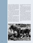 BOOTS FOR DOGS - Galapagos Conservancy - Page 4