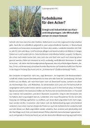 Turbobäume für den Acker? - Nachhaltige Waldwirtschaft