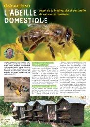 L'abeille domestique, agent de la biodiversité - Natagora