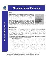 Managing Minor Elements G P - International Zinc Association