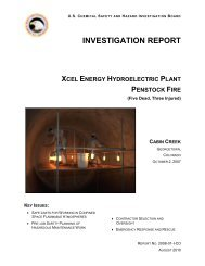 INVESTIGATION REPORT - US - - Chemical Safety and Hazard ...