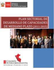 plan sectorial de desarrollo de capacidades de mediano plazo