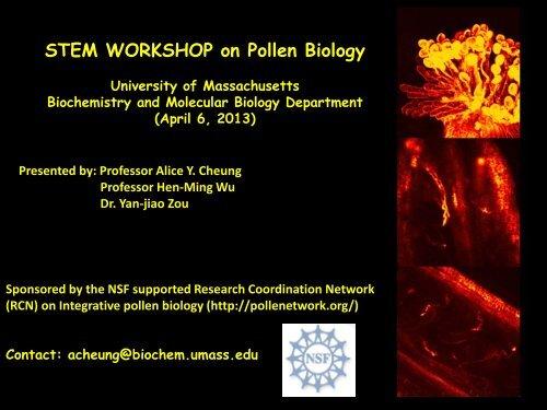 STEM WORKSHOP on Pollen Biology - UMassK12