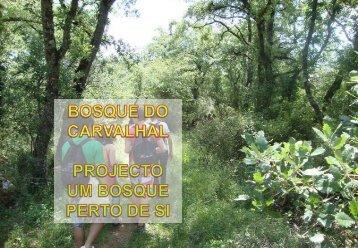 Bosque do Carvalhal - Ciência Viva