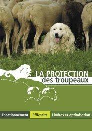 La protection des troupeaux : fonctionnement ... - Pays de l'ours