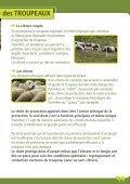La protection des troupeaux : fonctionnement ... - Pays de l'ours - Page 3