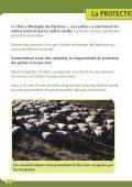 La protection des troupeaux : fonctionnement ... - Pays de l'ours - Page 4