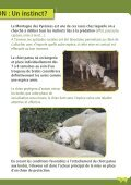 La protection des troupeaux : fonctionnement ... - Pays de l'ours - Page 5