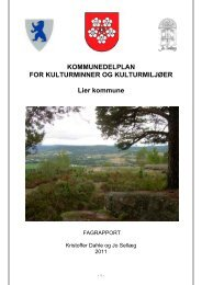Fagrapport for kulturminner og kulturmiljøer i Lier kommune