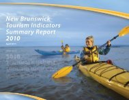 Tourism Indicators Summary Report 2010 - Government of New ...