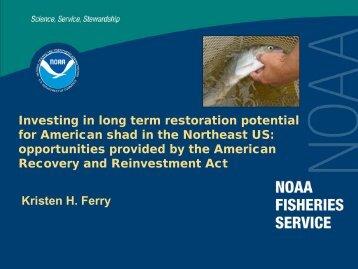 Why are American shad important? - Restore America's Estuaries