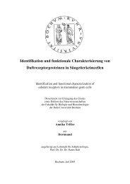 Identifikation und funktionale Charakterisierung - Logo Dragon-Ivf ...