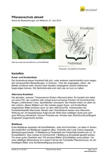 Pflanzenschutz aktuell