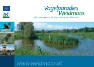 Download als pdf (1,6 MB) - Vogelparadies Weidmoos