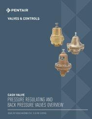 Cash Valve - Valves and Controls - Pentair