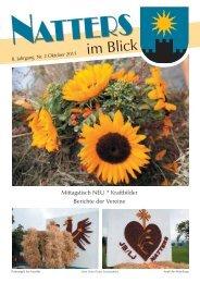 3,05 MB - Natters - Land Tirol