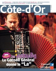 Mai 2009 en PDF - Conseil Général de la Côte-d'Or