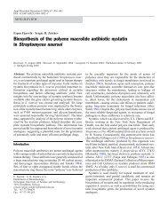 Biosynthesis of the polyene macrolide antibiotic ... - gardenoflight.org