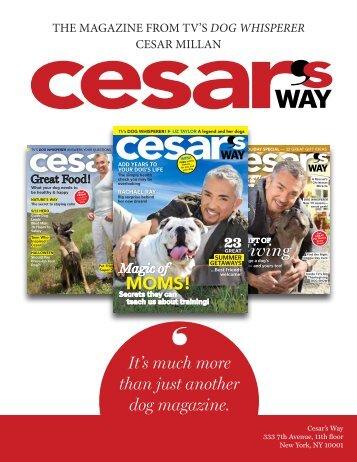 cesar - Cesar Millan