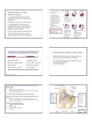 Micb 688L Cell Biol. Feb. 3, 2005 Membranes & Transport 1. All ...