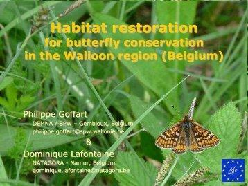 Habitat restorations for butterfly conservation in the ... - Vlindernet