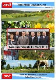 Enzesfeld-Lindabrunn Gemeinderatswahl 14. März 2010