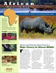 Africa's - African Wildlife Foundation