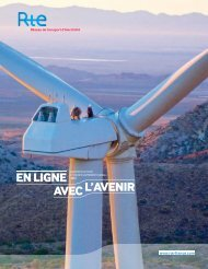 Rapport annuel 2012 - RTE