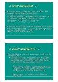 Matits Ágnes: Pontrendszer(ek) - Page 5
