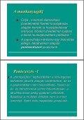 Matits Ágnes: Pontrendszer(ek) - Page 7