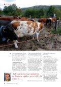 Effektiv fabrikk på skinner - Jernbaneverket - Page 6