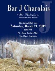 yearling bulls - Charolais Banner