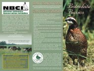 Bobwhite Basics Brochure - Division of Fish and Wildlife