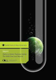 Paths to Global Chemical Safety - The Center for International ...