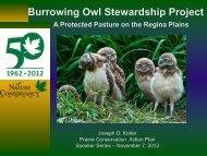 Burrowing Owl Stewardship Project - Saskatchewan Prairie ...
