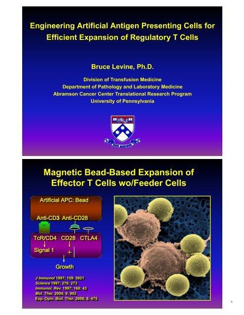 Engineering Artificial Antigen Presenting Cells for Efficient ...