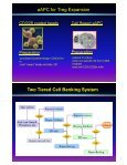 Engineering Artificial Antigen Presenting Cells for Efficient ... - Page 6