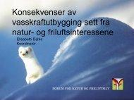 Konsekvenser av vasskraftutbygging sett fra natur - Sogn og ...