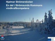 Hjalmar Strömer 20110530.pdf - Strömsunds kommun