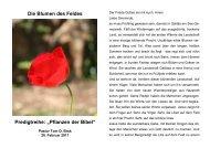 """Die Blumen des Feldes Predigtreihe: """"Pflanzen der Bibel"""""""