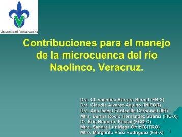 Contribuciones para el manejo de la micro cuenca del río Naolinco ...