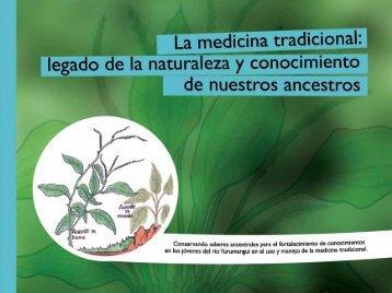 La medicin a tradional
