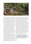 WWF: Flood Planner - Clim-ATIC - Page 6